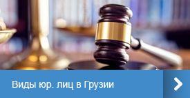 Виды юр. лиц в Грузии
