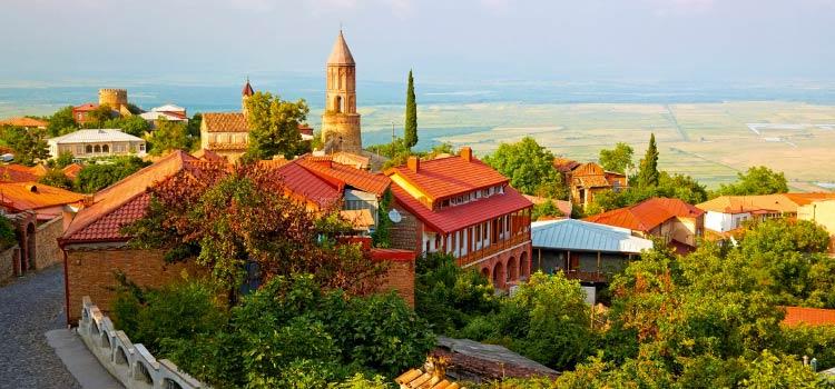 Разновидности ВНЖ в Грузии