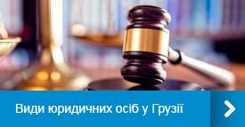 Види юридичних осіб у Грузії